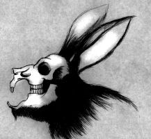 The Black Rabbit by Phobos-Romulus