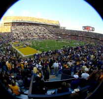 Tiger Stadium - Fisheye by scarredbutnotbroken