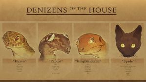 Denizens by Anuwolf
