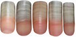 Fingernail PNG Stocks by Thy-Darkest-Hour