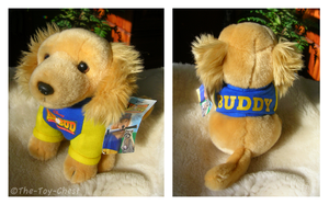 Air Bud Mini Plush - Buddy by The-Toy-Chest