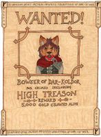 Wanted: Captain Bowser by LordFenrir