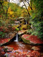 Autumn Wandering Waterfall by M-Lewis