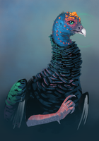 Ocellated Turkey by DimeSpin