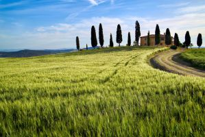 Val d'Orcia 7 by CitizenFresh