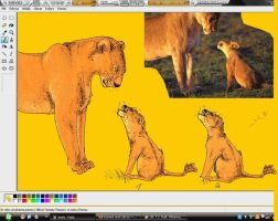 Lioness and cub by witam15