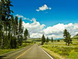 Driving through Yellowstone by KRHPhotography