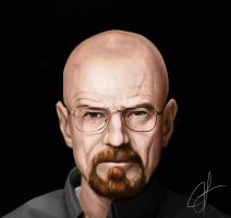 Breaking Bad: Walter White by hammn