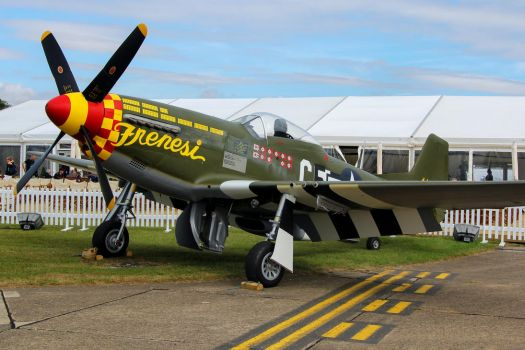 North American F-6K Mustang by Daniel-Wales-Images