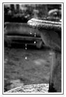 Water drops-2 by PauloOliveira