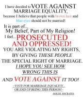 Why I voted AGAINST MARRIAGE EQUALITY! :D by TheAspiringWriter