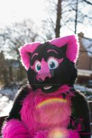 Winter Pink by FurryFursuitMaker