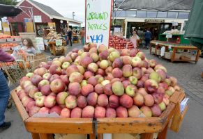 October 2014, Local Farm Stand Apples by Miss-Tbones