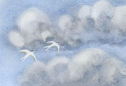 Clouds and Terns II by TanteAstrid