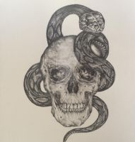 Skull and Snake by redmonks
