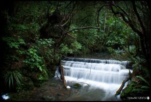 Ross creek 9 by shadowfoxcreative
