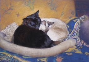 Sleeping Beauties - Pastel by AstridBruning