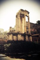 Temple of the Virgins + Rome by UrbanPhotog