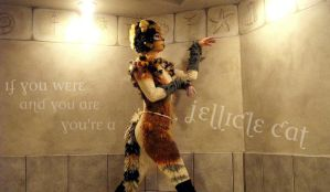 Jellicle Cat by ImHerMonster