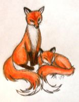 2 Red Foxes by Anjet