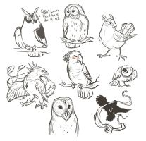 journal - bird sketches 1 by lyosha