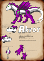 Akros Reference Sheet by Wyldfire7