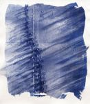 cyanotype by grus-grus