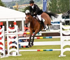 Jumping stock 52 by Kennelwood-Stock