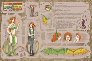 Anthro-Shakara's reference sheet by Shakara-the-Furious