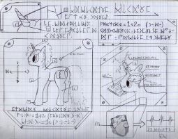 data_sheet_of_the_unicorn_by_etoile_ardente-d8lu1xz