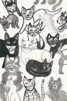 Black and White Cats by cleveroctober