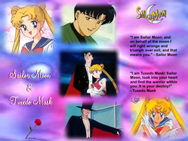 Request: Sailor Moon and Tuxedo Mask meme by Lady1Venus