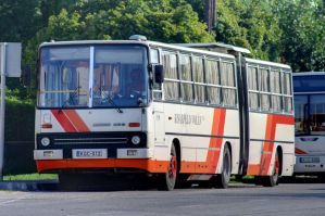 Ikarus 280 HDR by zseliakiraly