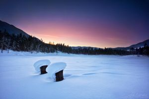 Hush by jaelise