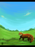 Red Panda by Polar-Wolf