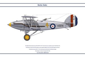 Audax GB 4 Sqn by WS-Clave