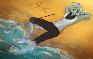 SS ~ Aeyel for Screeches by razrroth