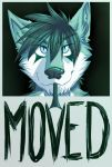 I'VE MOVED ACCOUNTS! by GothWolf-Lucifur