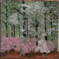 Forest in spring by gala19452000