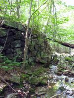 A Wall in the Woods 4 by MorganCG