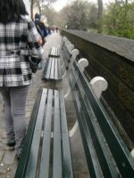 Benches Central Park NYC by flourpie