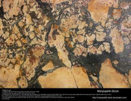 Stone Texture 8 - Marble by Melyssah6-Stock
