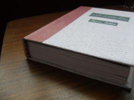 Let Love In by Terri Botta handmade fanfic book by InsaneJellyBean95