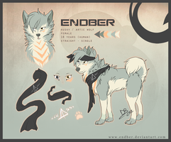 Endber reference sheet by Endber