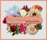 PNG's: Flowers I by sellyourhate
