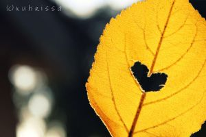 Love in one leaf by kuhrissa
