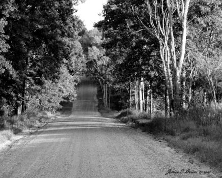 Road Less Traveled by NewJezebel