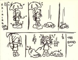Raining Cats and Dogs by timmieee