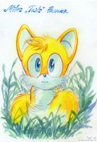 Tails' Childhood by Liris-san