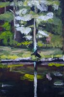 Reflection on the Eau Claire River (study) by Ghretchen